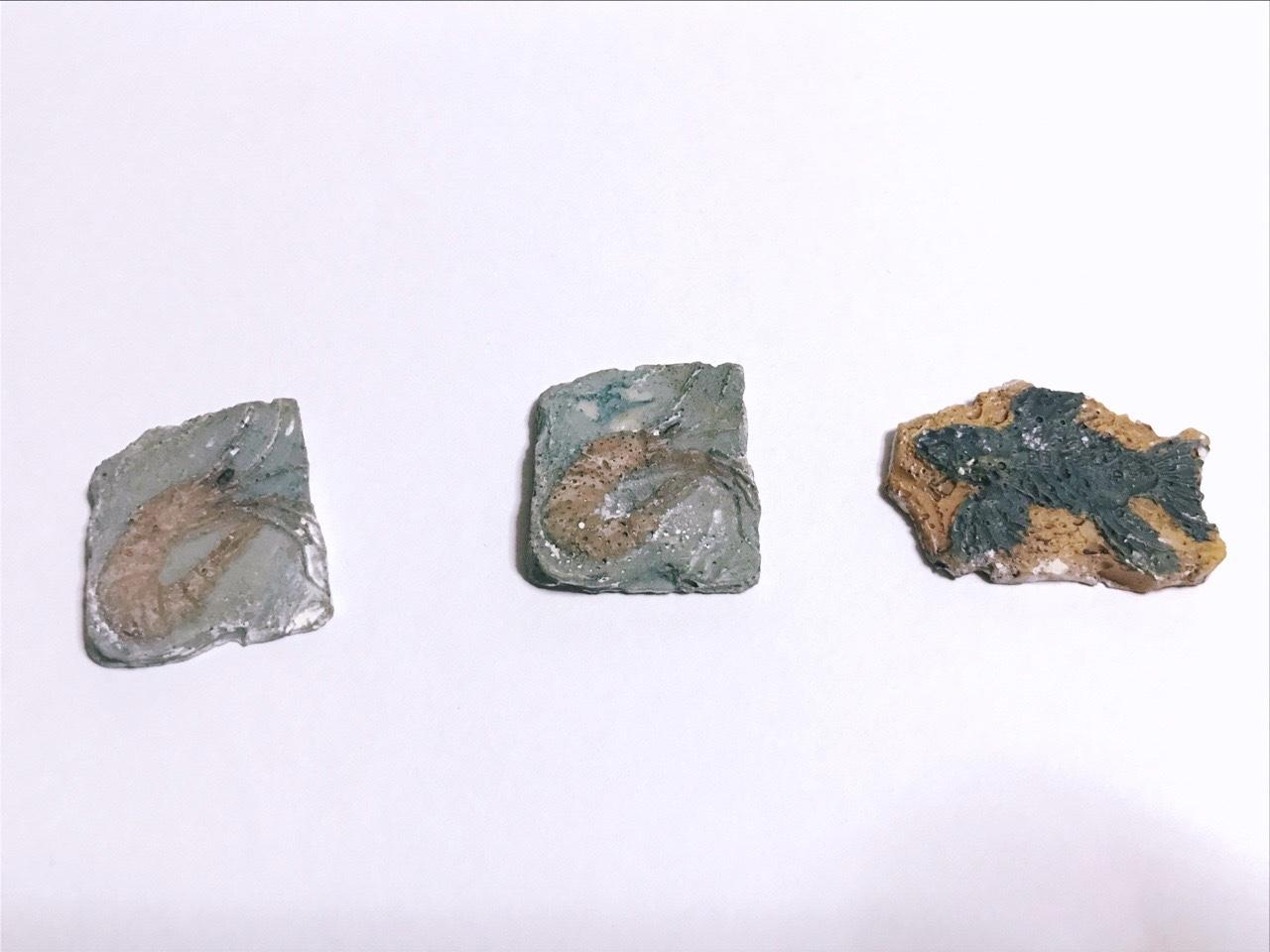 化石博物館シリーズ発掘後の画像