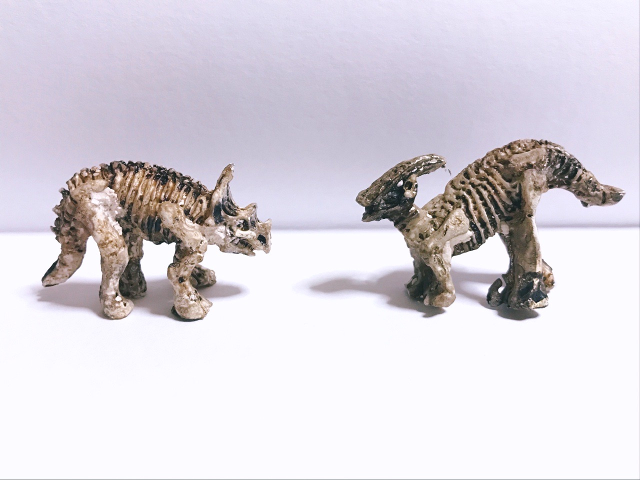 化石恐竜発掘シリーズ発掘後の画像